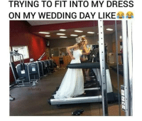 Trying to fit into my dress on my wedding day like :D: TRYING TO FIT INTO MY DRESS  ON MY WEDDING DAY LIKE  (afortafy Trying to fit into my dress on my wedding day like :D