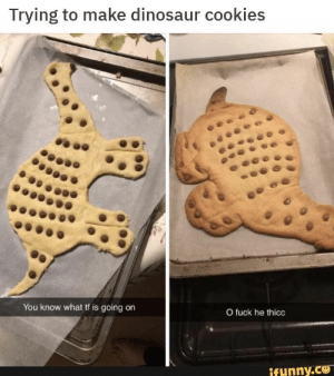 : Trying to make dinosaur cookies  You know what tf is going on  O fuck he thicc  funny.CO