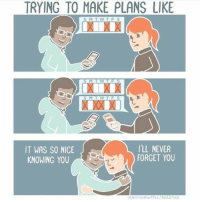 Memes, Buzzfeed, and Never: TRYING TO MAKE PLANS LIKE  IT WAS SO NICE  KNOWING YOU  I'LL NEVER  FORGET YOU  ⓒNATHANwPYLE / BUZZFEED Credit to Nathanwpyle