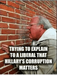 Memes, Cold, and Corruption: TRYING TO PLAIN  TOALIBERAL THAT  HILLARY S CORRUPTION  MATTERS Cold Dead Hands