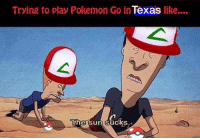 sun: Trying to play Pokemon Go in  Texas  like....  The Sun sucks
