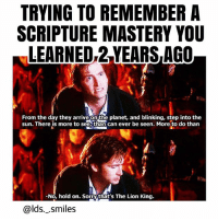 Lol, Memes, and The Lion King: TRYING TO REMEMBER A  SCRIPTURE MASTERY YOU  LEARNED,2 YEARS AGO  From the day they arrive on the planet, and blinking, step into the  sun. There is more to see,than can ever be seen. More to do than  -No, hold on. Sorrythat's The Lion King.  @lds._.smiles Lol the only one I can still recite is Helamen 5:12