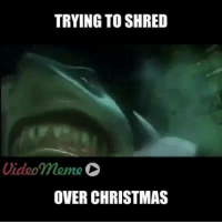 The feels are real 😂😂: TRYING TO SHRED  Video meme D  OVER CHRISTMAS The feels are real 😂😂