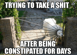 Funny, Struggle, and The Struggle Is Real: TRYING TO TAKEASHIT  AFTER BEING  CONSTIPATED FOR DAYS The struggle is real