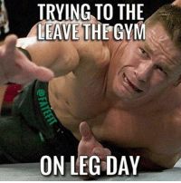 @doyoueven leg day?: TRYING TO THE  THE GYM  LEAVE  ON LEG DAY @doyoueven leg day?