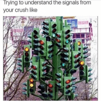 Tag your crush if you're brave 😏: Trying to understand the signals from  your crush like Tag your crush if you're brave 😏