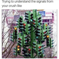 Tag your crush 😂: Trying to understand the Signals from  your crush like Tag your crush 😂
