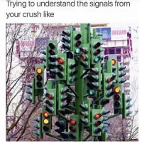 Tired: Trying to understand the signals from  your crush like Tired