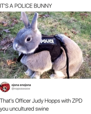 Petty, Police, and Bunny: T'S A POLICE BUNNY  OLICE  PETTY MAYONNAI  ojona enojona  @noposwoow  That's Officer Judy Hopps with ZPD  you uncultured swine Police Bunny!!!!!