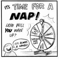 Memes, Music, and Help: TS TIME FOR A  NAP!  HOW WILL  YOU WAKE  UP?  ANGRY  MORE  o.  ( IT'S ALWAYS (artist: @hannahhillam) y'all drop some of your favourite bands-music artists in the comments along with their genre to help other people find music. ♥️♥️