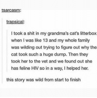 Cats, Family, and Memes: tsarcasm:  trapsical:  I took a shit in my grandma's cat's litterbox  when I was like 13 and my whole family  was wilding out trying to figure out why the  cat took such a huge dump. Then they  took her to the vet and we found out she  has feline HIV so in a way, I helped her.  this story was wild from start to finish