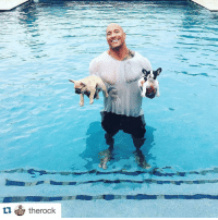 "Baby, It's Cold Outside, Clothes, and Fall: tu therock The Rock spent his Labor Day saving a puppy from drowning. No big deal 🐶 Repost @therock ・・・ Here's a fun Labor Day weekend story... We just decided to add two new members to our Johnson family. Baby French Bulldogs. In my right hand is BRUTUS and in my left hand is HOBBS. Bring them home and immediately take them outside so they can start learning how to ""handle their business and potty like big boys"". I set them both down and they both take off in a full sprint and fall right into the deep end of our pool. HOBBS immediately starts doggy paddling while BRUTUS (like a brick) sink heads first to the bottom of the pool. I take off into a full sprint, fully clothed, dive in the pool, swim to the bottom, rescue my brick, I mean BRUTUS and bring him back to the edge of the pool. He was a little delirious.. took a moment, threw up all the water he swallowed and looked up at me as if to say, ""Thank God you didn't have to give me mouth to mouth!"" and then ran off to play with his brother. A few lessons I've learned today.. A) Not all puppies have the instinct to doggie paddle. B) Some puppies (like BRUTUS) will be so in shock by experiencing water they will sink extremely fast so react quick. C) While spiriting to save your puppies life, before you dive in, try and throw your cel phone to safety. Don't keep it in your pocket... like I did. BRUTUSLives HOBBSCanSwim MyCelPhonesDead AndNoMouthToMouthNeeded HappyLaborDay"