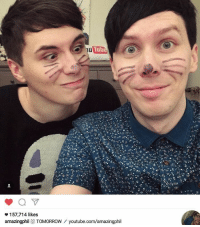 Tub  157,714 likes  o amazingphil TOMORROW  youtube.com/amazingph OMGOMGOMGOMGOMG danandphil danhowell phillester pinof tabinof dapgo tatinof danisnotonfire amazingphil phan dapgoose pinof8 philisnotonfire philisnotonfire8 itshere itsfinallyhere excited omg