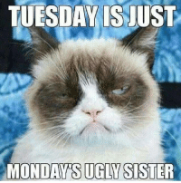 Sad but true  - happy Tuesday!: TUESDAY IS JUST  MONDAY IS UGLY SISTER Sad but true  - happy Tuesday!