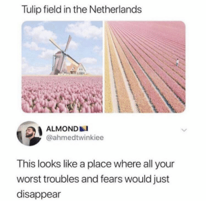 https://t.co/jUAm5iYZPO: Tulip field in the Netherlands  ALMOND  @ahmedtwinkiee  This looks like a place where all your  worst troubles and fears would just  disappear https://t.co/jUAm5iYZPO