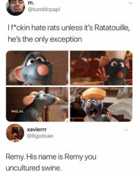 Funny, Ratatouille, and Remy: @tumblrpapi  l f*ckin hate rats unless it's Ratatouille,  he's the only exception  ewill ent  xavierrr  @6godxae  Remy. His name is Remy you  uncultured swine.