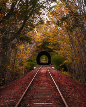 World, Another, and Another World: Tunnel to another world