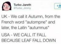 "Meirl: Turbo Jareth  @Turbo-Jimmy  .  UK - We call it Autumn, from the  French word ""autompne"" and  later, the Latin ""autumnus""  USA - WE CALL IT FALL  BECAUSE LEAF FALL DOWN Meirl"