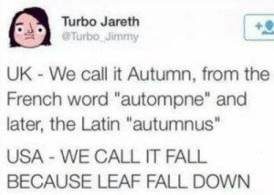 "fall down: Turbo Jareth  @Turbo Jimmy  UK - We call it Autumn, from the  French word ""autompne"" and  later, the Latin ""autumnus""  USA WE CALL IT FALL  BECAUSE LEAF FALL DOWN"