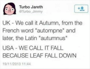 "Why Fall is Fall: Turbo Jareth  @Turbo Jimmy  UK - We call it Autumn, from the  French word ""autompne"" and  later, the Latin ""autumnus""  USA WE CALL IT FALL  BECAUSE LEAF FALL DOWN  19/11/2013 11:4 Why Fall is Fall"