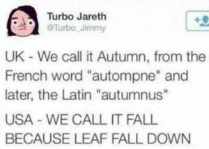 """Dank, Fall, and Memes: Turbo Jareth  @Turbo-Jimmy  .  UK - We call it Autumn, from the  French word """"autompne"""" and  later, the Latin """"autumnus""""  USA - WE CALL IT FALL  BECAUSE LEAF FALL DOWN Meirl by PennywiseIsBae FOLLOW HERE 4 MORE MEMES."""