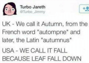 "LEAF FALL by Bigg_Smoke69 MORE MEMES: Turbo Jareth  Turbo Jimmy  UK - We call it Autumn, from the  French word ""autompne"" and  later, the Latin ""autumnus""  USA WE CALL IT FALL  BECAUSE LEAF FALL DOWN LEAF FALL by Bigg_Smoke69 MORE MEMES"