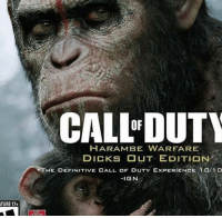 dicks out: TURE 17+  CALLFDUTY  HARAM BE WARFARE  DICKS OUT EDITION  THE DEFINITIVE CALL OF DUTY EXPERIENC  10/10  IGN