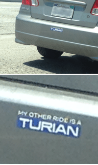 Bailey Jay, Gif, and Tumblr: TURIAN   T RIAN fictivetruism:    I need one of those.