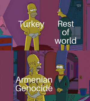 History, Turkey, and World: Turkey  Rest  of  world  Armenian  Genocide We will make them see