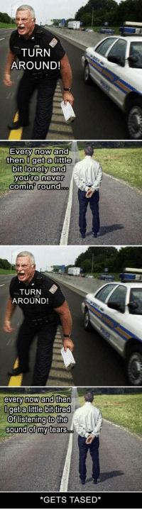 Funny, Pictures, and Never: TURN  AROUND!  Ever  then U get a little  bit lonely and  y now ano  you Te never  comin round  TURN  AROUND!  very now ano  get alittle bit tired  Oflistening to the  sound of my tears..  *GETS TASED* 35 Funny Pictures Of The Day #funny #picture
