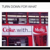 Memes, Molly, and Turn Down for What: TURN DOWN FOR WHAT  Coke. with  Molly
