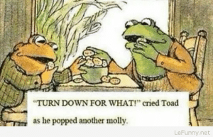 Molly, Party, and How To: TURN DOWN FOR WHAT! cried Toad  as he popped another molly  LeFunny.net Toad Knows How To Party