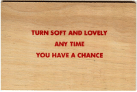 Time, You, and Chance: TURN SOFT AND LOVELY  ANY TIME  YOU HAVE A CHANCE