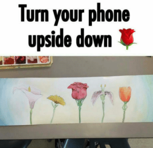 Phone, Can, and Down: Turn your phone  upside down Can you see it?