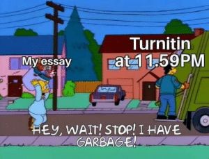 Memes, Http, and Turnitin: Turnitin  Fat 1 1.59PM  My essay  HEy, WAIt! StOp! I HAVE  GARBAGE Invest in Simpsons memes, profits will skyrocket! via /r/MemeEconomy http://bit.ly/2Gs5rV0
