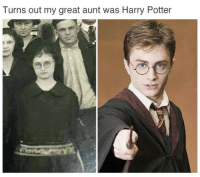 Harry Potter, Abuela, and Potter: Turns out my great aunt was Harry Potter <p>Cuando descubres que tu abuela es Jarra Pottar</p>