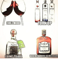 Chill, Hennessy, and Memes: TURNUP  CHILL MODE  len nessy  E-  GING TOJAIL  WHERE BABIES COME FROM Enjoy The Weekend People...Just Keep This In Mind 😂😂😂😂😂😂 pettypost pettyastheycome straightclownin hegotjokes jokesfordays itsjustjokespeople itsfunnytome funnyisfunny randomhumor forpeepswholiketogetfuckedup goneoffthathenny hennessy ciroc
