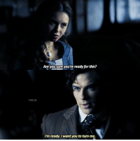 Memes, 🤖, and Tvd: TVD.IG  Are yousure you're rea  for this?  dy I'm ready. want you to turn me. [1x13] — datherine or delena?