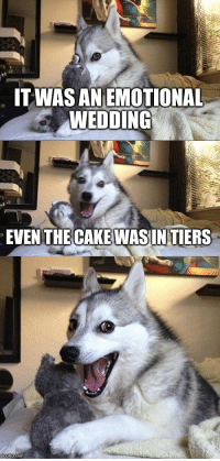 Bad Pun Dog | IT WAS AN EMOTIONAL WEDDING EVEN THE CAKE WAS IN TIERS | image tagged in memes,bad pun dog | made w/ Imgflip meme maker: TWASAN EMOTIONAL  WEDDING  EVENTHE CAKE WASINTIERS  ingilip.com Bad Pun Dog | IT WAS AN EMOTIONAL WEDDING EVEN THE CAKE WAS IN TIERS | image tagged in memes,bad pun dog | made w/ Imgflip meme maker