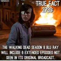 Excited? walkingdead thewalkingdead twd cr @entertainmenttruefacts: TWDTRUEFACTS  TRUE FACT  2739  THE WALKING DEAD SEASON 8 BLU RAY  WILL INCLUDE 6 EXTENDED EPISODES NOT  SEEN IN ITS ORIGINAL BROADCAST Excited? walkingdead thewalkingdead twd cr @entertainmenttruefacts