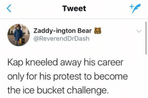 Protest, Bear, and Ice: Tweet  1  Zaddy-ington Bear  @ReverendDrDash  Kap kneeled away his career  only for his protest to become  the ice bucket challenge. Raise awareness