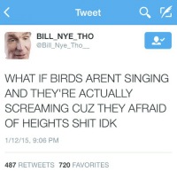 Tweet  BILL NYE THO  @Bill Nye Tho  WHAT IF BIRDS ARENT SINGING  AND THEY'RE ACTUALLY  SCREAMING CUZ THEY AFRAID  OF HEIGHTS SHIT IDK  1/12/15, 9:06 PM  487  RETWEETS 720  FAVORITES @thescienceguy is an absolute prophet