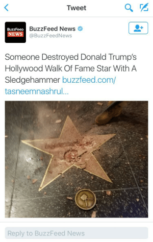 Gif, News, and Target: Tweet  BuzzFeed News  BuzzFeeD  NEWS@BuzzFeedNews  Someone Destroyed Donald Trump's  Hollywood Walk Of Fame Star With A  Sledgehammer buzzfeed.com/  tasneemnashrul  Reply to BuzzFeed News eritrillian: