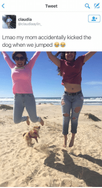 Lmao, Girl Memes, and Jumped: Tweet  claudia  claudiaaylin  Lmao my mom accidentally kicked the  dog when we jumped   匚 I shouldn't be laughing 😩😭 https://t.co/Uizw7LJRpe