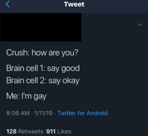 Android, Crush, and Twitter: Tweet  Crush: how are you?  Brain cell 1: say good  Brain cell 2: say okay  Me: I'm gay  8:06 AM-1/11/19 Twitter for Android  128 Retweets 911 Likes