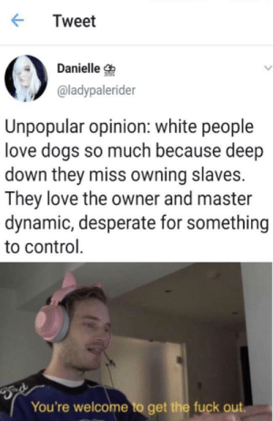 slaves: Tweet  Danielle  @ladypalerider  Unpopular opinion: white people  love dogs so much because deep  down they miss owning slaves.  They love the owner and master  dynamic, desperate for something  to control  You're welcome to get the fuck out.