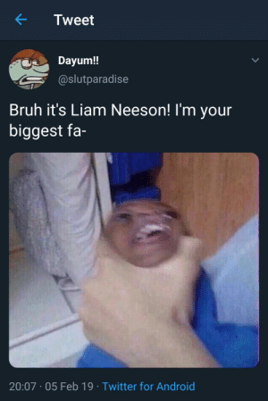 Android, Bruh, and Dank: Tweet  Dayum!!  @slutparadise  Bruh it's Liam Neeson! I'm your  biggest fa-  20:07.05 Feb 19 Twitter for Android You done fucked up, Neeson by MyDixyRekt2 MORE MEMES