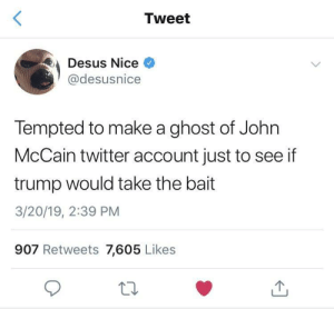 This would actually work: Tweet  Desus Nice  @desusnice  Tempted to make a ghost of John  McCain twitter account just to see if  trump would take the bait  3/20/19, 2:39 PM  907 Retweets 7,605 Likes This would actually work