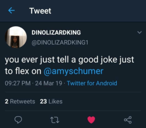 Android, Dank, and Flexing: Tweet  DINOLIZARDKING  @DINOLIZARDKING1  you ever just tell a good joke just  to flex on @amyschumer  09:27 PM 24 Mar 19 Twitter for Android  2 Retweets 23 Likes My Vag by sl101m MORE MEMES