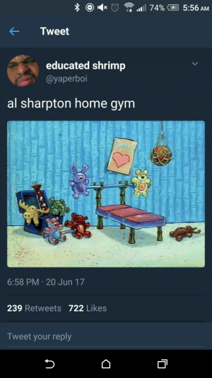 Bout to get the work in: Tweet  educated shrimp  @yaperboi  al sharpton home gym  6:58 PM 20 Jun 17  239 Retweets 722 Likes  Tweet your reply Bout to get the work in
